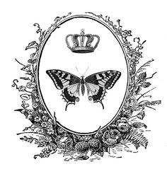 CARTEL CON MARIPOSA