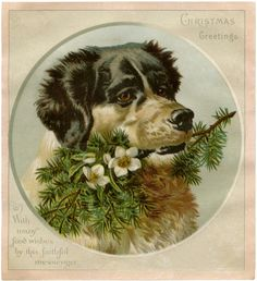 Vintage Christmas Dog Image! - The Graphics Fairy