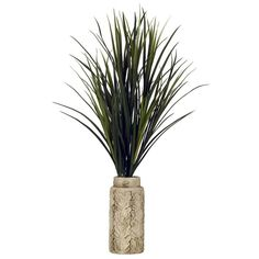 Mango Grass Arrangement in Embossed Cream Planter ($100) ❤ liked on Polyvore featuring home, home decor, floral decor and artificial arrangement