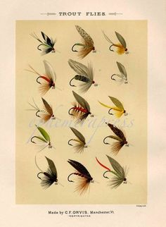 Items similar to TROUT FLIES glorious fly fishing print no.-Items similar to TROUT FLIES glorious fly fishing print no. 1 on Etsy trout flies glorious fly fishing print no 1 by EPHEMERApress - Fly Fishing Lures, Trout Fishing Tips, Salmon Fishing, Fishing Tackle, Tuna Fishing, Salmon Flies, Fly Rods, Sea Fish, Vintage Fishing