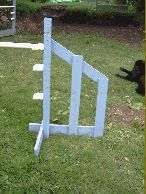 Agility Jumps with wings