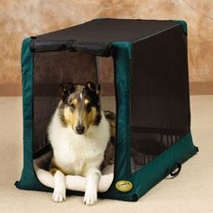 The It'z a Breeze Too Crates are a cost-effective lightweight alternative to wire crates and available in a lovely green color