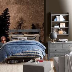 Boys Bedroom Ideas | PBteen