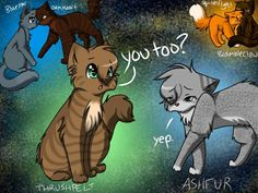 Thrushpelt and Ashfur | Warrior Cats | Pinterest