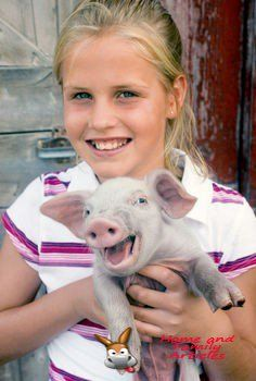 Pet pig smiling