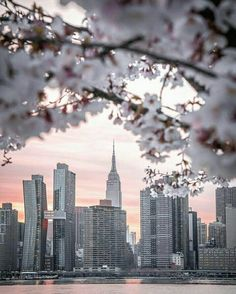 Photo by icapture_nyc Instagram