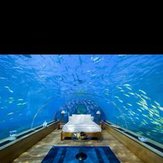 Second coolest bedroom in the world!!!