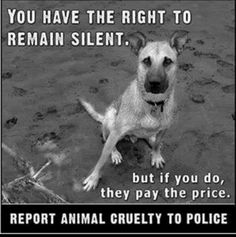 Report Animal Cruelty. Please don't be afraid, you can do so anonymously.