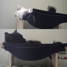 DIY Pets: Build a Cat Hammock . sleeves w/ hammock between them, to go over extending arms attached to frame on wall. Make the hammock outta old jeans? Animal Projects, Animal Crafts, Crazy Cat Lady, Crazy Cats, Diy Cat Hammock, Photo Chat, Here Kitty Kitty, Cat Furniture, Pet Beds