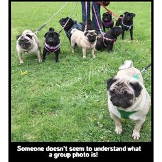 There's always one! lol