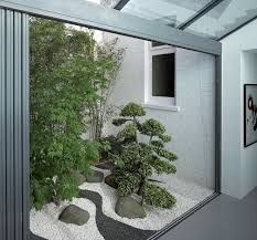 Image result for bamboo in lightwell