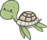 Una piccola tartaruga si arrampica su un albero fino ad arrivare al primo ramo e poi si butta atterra... http://barzelletta.altervista.org/una-piccola-tartaruga/ #barzellette