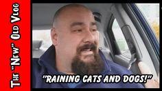 RAINING CATS AN DOGS! // T.N.O.V. 11.29.16