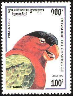 Camboya 1995 - El Lorito Tricolor o Tricogloso Tricolor, habita en el Sudeste Asiático.