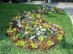 imagenes flores y jardines