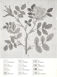 Gallery.ru / Фото #11 - Cross Stitch Pattern in Color - Mosca