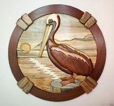 .pelican