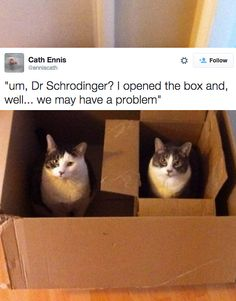 30 Tweets About Science That Will Make You Laugh And Then Think