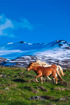 Iceland is an other-worldly natural wonderland for outdoor enthusiasts, with great nightlife to boot.