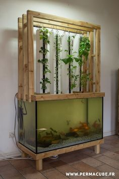 50 Fascinating DIY Indoor Aquaponics Fish Tank Ideas fish tank ideas apartment 50 Fascinating DIY I 50 Fascinating DIY Indoor Aquaponics Fish Tank Ideas fish tank ideas apartment 50 Fascinating DIY I Zetta Hilpert fish nbsp hellip Aquaponics System, Indoor Aquaponics, Aquaponics Fish, Aquaponics Greenhouse, Hydroponic Fish Tank, Hydroponic Growing, Hydroponic Gardening, Organic Gardening, Gardening Tools