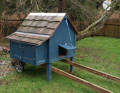Blue chicken tractor