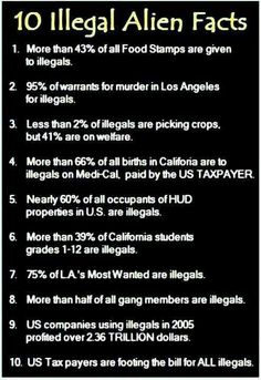 Illegal alien facts