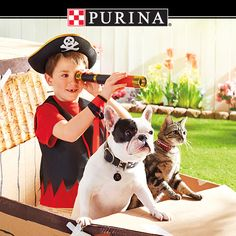 Play the Purina(R) Summer Treasure Instant Win Game daily through 8/11 for a chance to win FREE Purina products!  Visit www.PureLoveForPets.com