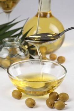 Bayer Guide To Olive Oil