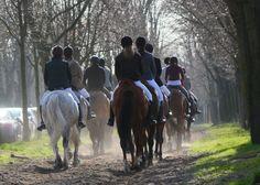 Allée cavalière du bois de Vincennes / Cercle Hippique du Bois de Vincennes