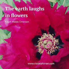 so fabulous this time of year. Textile Artists, Peonies, Inspirational Quotes, Textiles, Flowers, Instagram, Life Coach Quotes, Inspiring Quotes, Fabrics