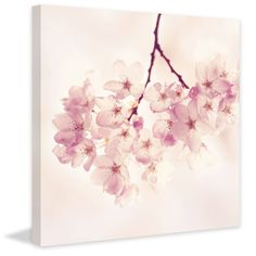 'Cherry Blossoms' Painting Print on Wrapped Canvas (40 x 40), Pink, Size Large