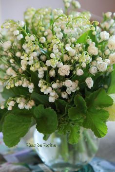 muguet...lilies of the valley