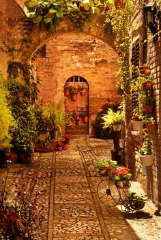 "A hidden ""Flowered"" corner in Tuscany-Italia Places To Travel, Places To See, Places Around The World, Around The Worlds, Beautiful World, Beautiful Places, Under The Tuscan Sun, Tuscany Italy, Sorrento Italy"