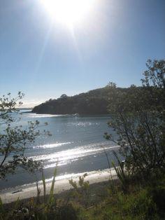 Waiheke Island Beautiful World, Most Beautiful, Beautiful Places, Norfolk Island, Waiheke Island, Homeland, Continents, New Zealand, Places Ive Been