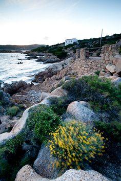 Sailing school in Caprera, island off the Sardinian coast...wind guaranteed!