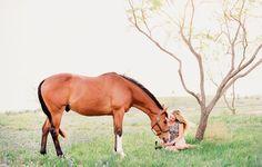 fine art equine photography   dallas, texas   kirstie marie photography   www.kirstiemarie.com