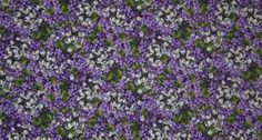 Purple Lilac Floral Fabric By Yard, Quarter Yard, Fat Quarter Floral Packed Flowers Fabric Cotton Quilting Fabric w2/31