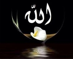 Allah+++ ديدبان ! بان ! بان ! كَلُه الدبان !!! غُصنُ بانٍ +++ كرباج ! ورا ! ياسطا +++ الشعب الحافى !!! للو لم أكن مصرييا، لوددتُ أن أكون مصرييا (الزعيم مصطففى كمال) +++ فيه أوسخ منكم فى البلد ؟ فيه حَد يرضى يقعد معاكم ؟ طَيب : وااااادى قعده ! ( شايفين بَقَى أنا ديموقراطى قد إييييه ؟) ╬‴﴾﴿ﷲ ☀ﷴﷺﷻ﷼﷽ﺉ ﻃﻅ‼ ﷺ ♕¢©®°❥❤�❦♪♫±البسملة´µ¶ą͏Ͷ·Ωμψϕ϶ϽϾШЯлпы҂֎֏ׁ؏ـ٠١٭ڪ۞۟ۨ۩तभमािૐღᴥᵜḠṨṮ'†•‰‽⁂⁞₡₣₤₧₩₪€₱₲₵₶ℂ℅ℌℓ№℗℘ℛℝ™ॐΩ℧℮ℰℲ⅍ⅎ⅓⅔⅛⅜⅝⅞ↄ⇄⇅⇆⇇⇈⇊⇋⇌⇎⇕⇖⇗⇘⇙⇚⇛⇜∂∆∈∉∋∌∏∐∑√∛∜∞∟∠∡∢∣∤∥∦∧∩∫∬∭≡≸≹⊕⊱⋑⋒⋓⋔⋕