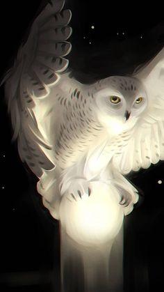 owl art projects for kids ; owl art for kids ; Tier Wallpaper, Animal Wallpaper, Owl Wallpaper Iphone, Cute Owls Wallpaper, Beautiful Wallpaper, Trendy Wallpaper, Colorful Wallpaper, Black Wallpaper, Flower Wallpaper