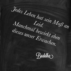 Von Buddha