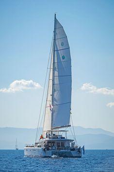 Catamarans Cup!