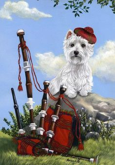 The most Scottish picture you'll ever find: a Westie and Bapipes. (Although, I suppose it could use a kilt.)