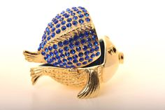 Gold & Blue Fish