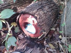 Homemade Log Geocache Container #geocaching #caching #unique geocaches