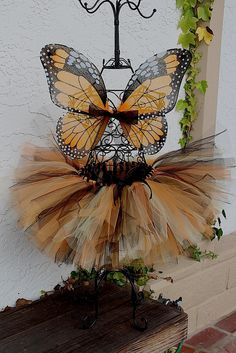 Little girl butterfly costume!  Precious!