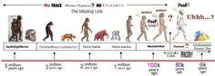 human timeline - Google Search