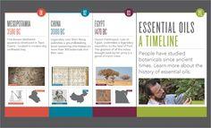 Essential Oils: A Timeline