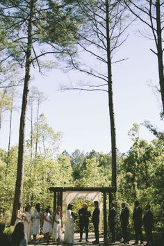 226 best in the woods images in 2019 event venues wood forests rh pinterest com