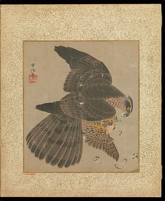 The Metropolitan Museum of Art - Album of Hawks and Calligraphy.   Kano Tsunenobu  (Japanese, 1636–1713) Period: Edo period (1615–1868) Date: 17th–18th century Culture: Japan Medium: Album of ten paintings; ink and color on silk.