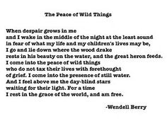 Image result for the peace of wild things poem